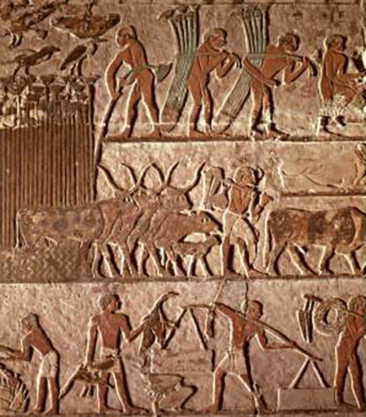 an analysis of the development of civilization in the ancient world The theory of the 'clash of civilizations,' promulgated culture in an analysis of the trends in the arab world  sold as international development.